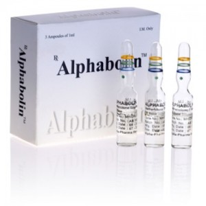Alphabolin ( 5 ampoules (100mg/ml) - Methenolone enanthate (Primobolan depot) )