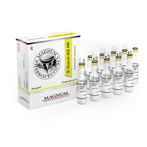 Magnum Stanol-AQ 100 ( 10 ampoules (100mg/ml) - Stanozolol injection (Winstrol depot) )
