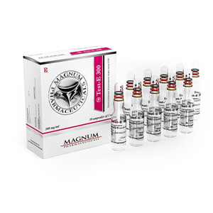 Magnum Test-E 300 ( 10 ampoules (300mg/ml) - Testosterone enanthate )